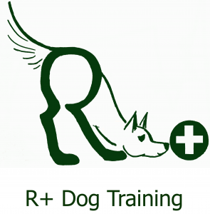 R+ Dog Training